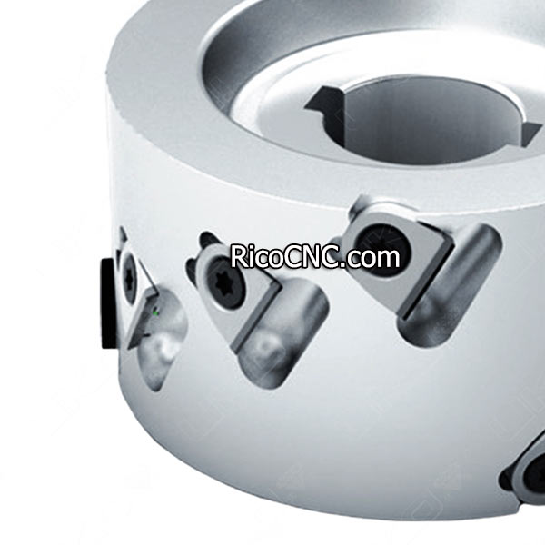 Replaceable PCD pre-milling cutter.jpg